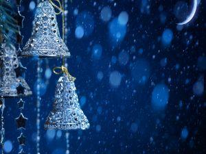 Little blue bells