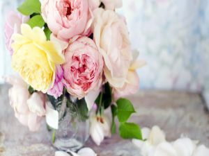 Roses of different colors in a glass vase