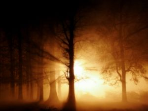 Ghostly fog