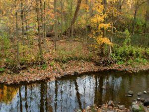 Small river in autumn