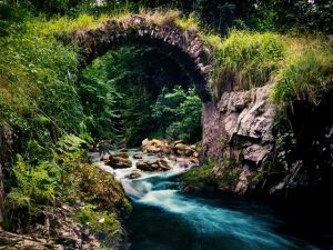 River under a small bridge