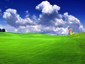 Windows on a green meadow