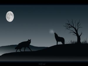 Wolves howling at the moon in the dark night
