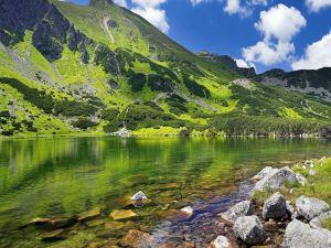 Green mountain near the river