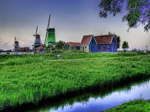 Windmills seen from across the river