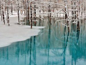Fascinating winter landscape