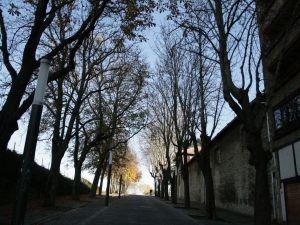 Road to Caballo Blanco