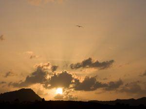 Sunset in the harbor of St. John, Antigua