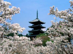 Pagoda and trees