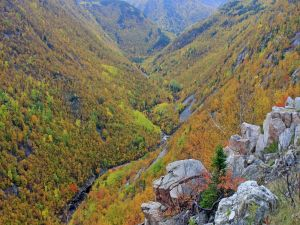 Mountains with autumn colors
