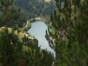A lake among trees