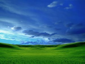 Contrast of green and blue colors