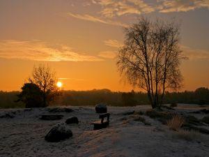 Snow at dawn