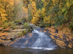 A river in autumn