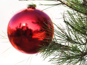 A red ball on the Christmas tree