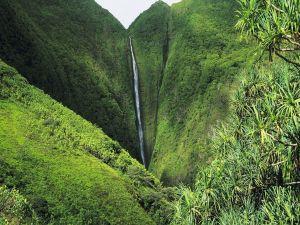 Fine waterfall in green mountain