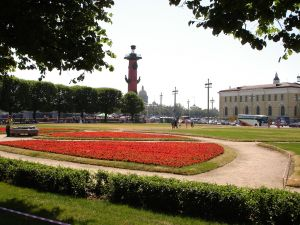 Park with red flowers