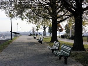 Benches in the walk
