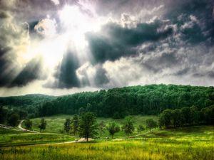 Sun rays light the road