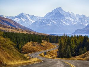 Mountains, forest and road in New Zealand