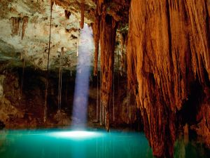 Sunlight in the cenote