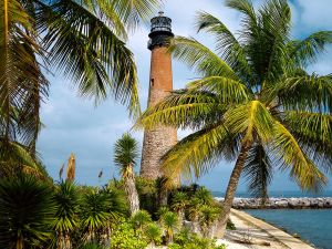 Lighthouse between palms