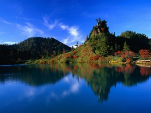 Red and green colors in the vegetation of lake