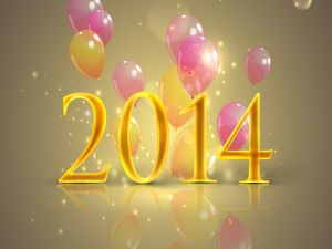 Celebrating the New Year 2014
