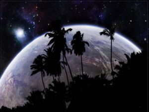 Palm trees in space