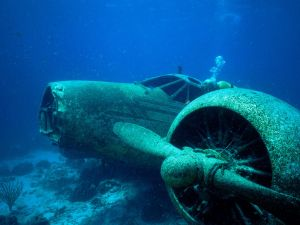 Diver next to a sunken plane