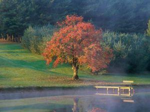 The calm of an autumn morning