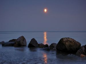 The bright light of moon on the sea