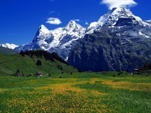 Great mountains and a green meadow