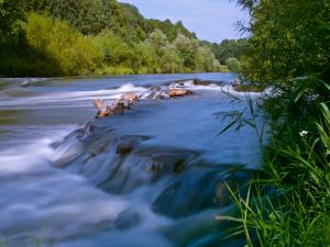 The river stream