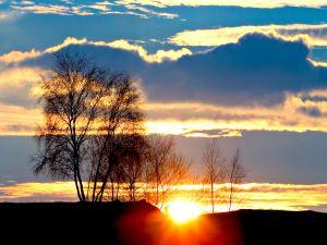 A golden sun peeking over the horizon