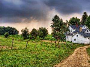Path towards the house