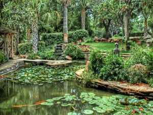 Green garden with water lilies and statues
