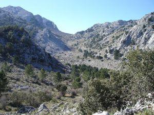 Llanos del Endrinal (Spain)