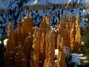 Fairy chimney with snow, in Bryce Canyon National Park (Utah)