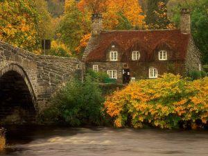 Autumn across the bridge