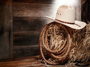 A hat and a rope