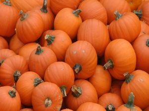 Round pumpkins