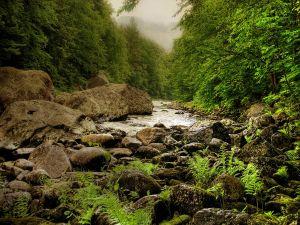 Small river between big stones