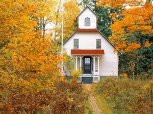 Small house surrounded by autumnal trees