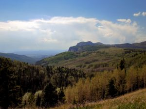 Landscape in nature