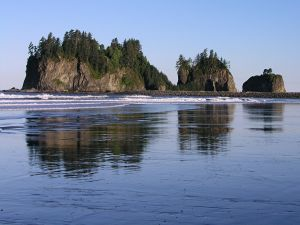 Islets with trees on the beach