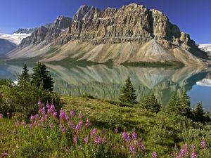 The Bow lake in Alberta, Canada