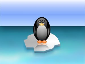 Penguin over the ice