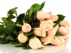 Bouquet with buds of roses