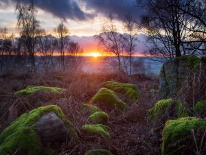 The setting of the sun as seen from the rocks with moss